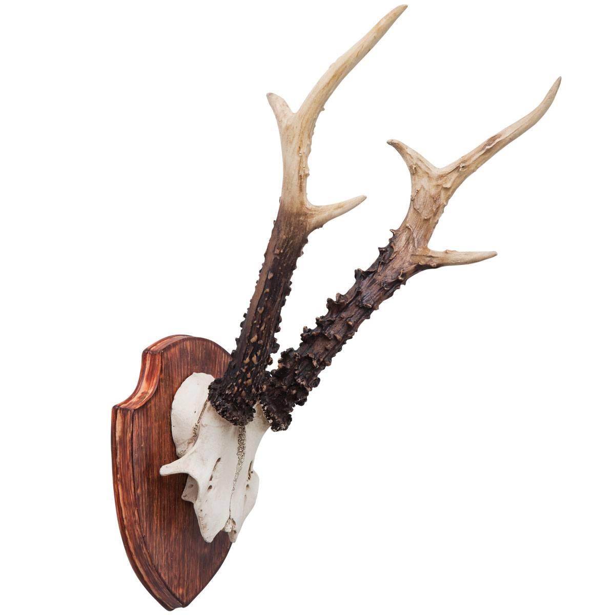 Faux Roe Deer Antlers