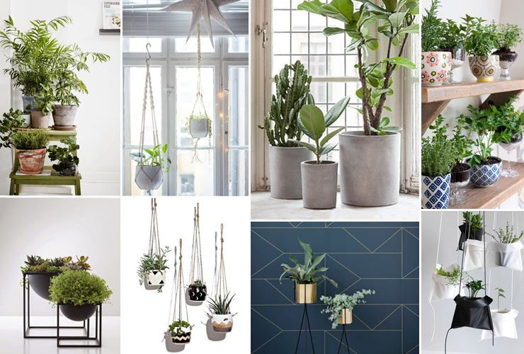concrete, ceramic and hanging planters