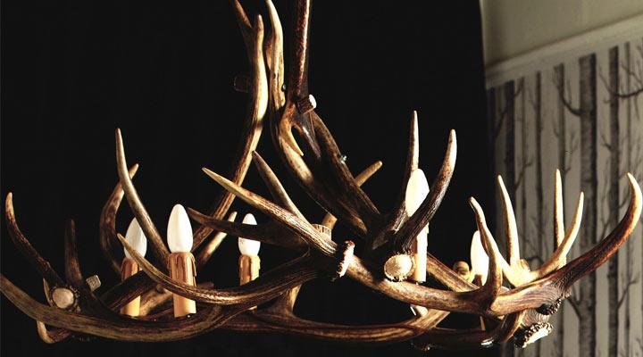 Real Antler Chandeliers Unique Lighting For Your Home