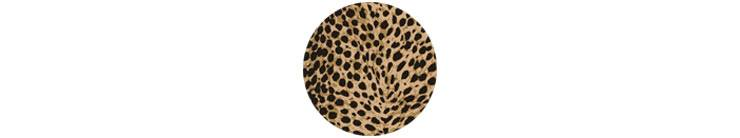 Leopard Print Home