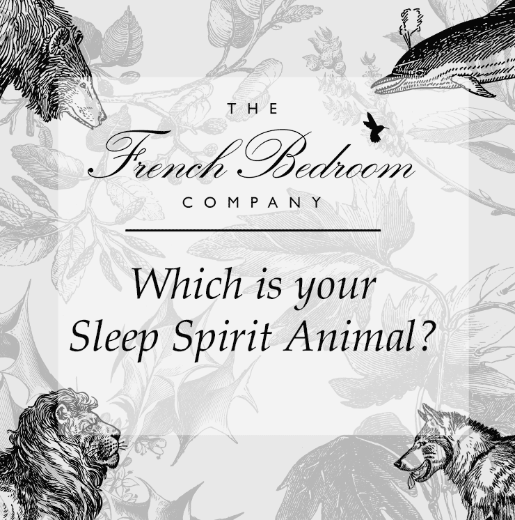 What is Your Spirit Sleep Animal?